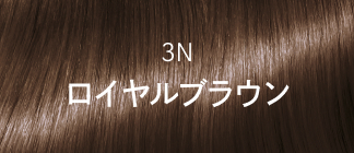 3N ロイヤルブラウン