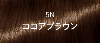 5N ココアブラウン